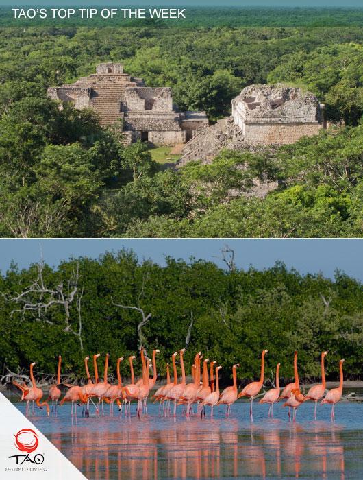 Visit Ek Balam Ruins