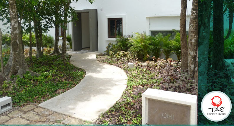 Repainting the walls in KIN, CHI, HIRA and RAM.
