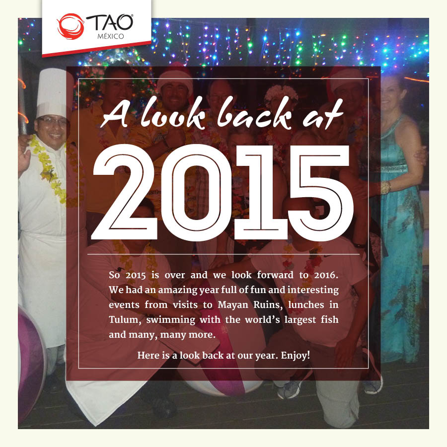 A Look Back at 2015 // TAO Mexico