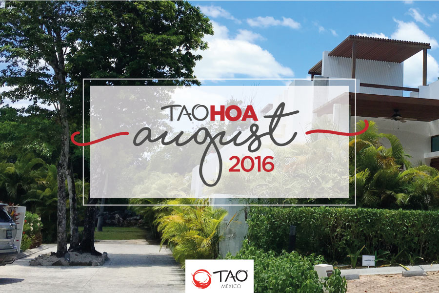 We Are TAO Newsletter / August 2016 / TAO México