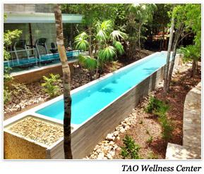 TAO Wellness Center