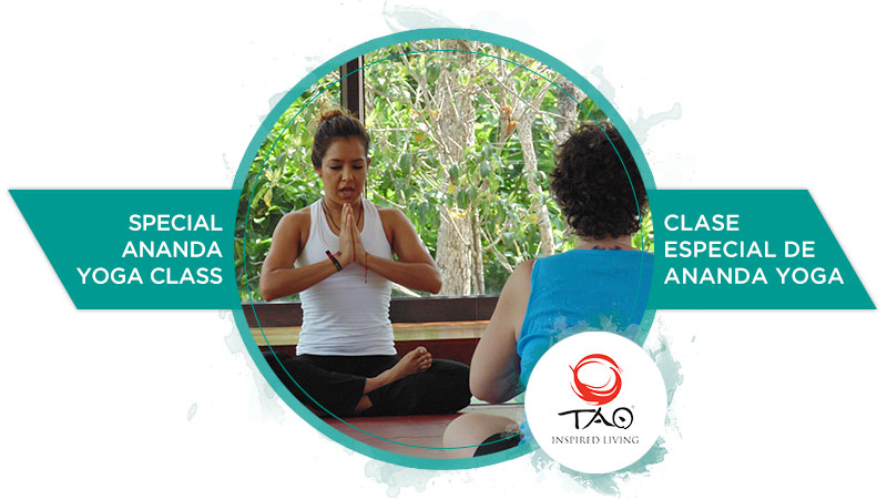 Special Ananda Yoga Class, with Monse