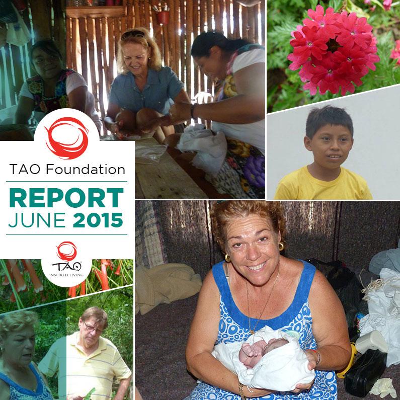 TAO Foundation Report | Jun 2015 | TAO Inspired Living