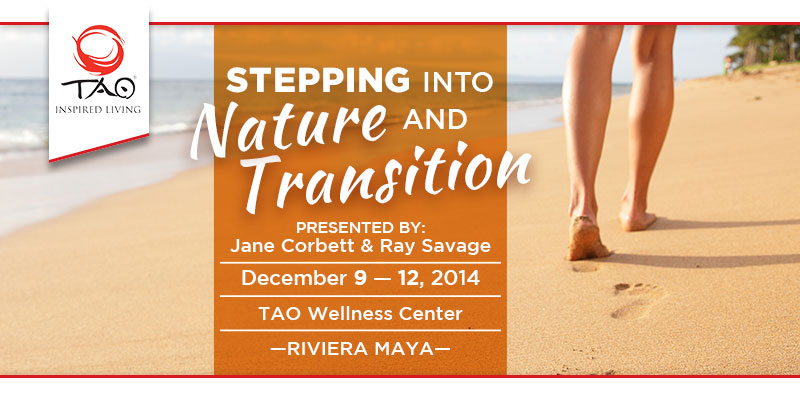 Stepping into Nature and Transition with Jane Corbett