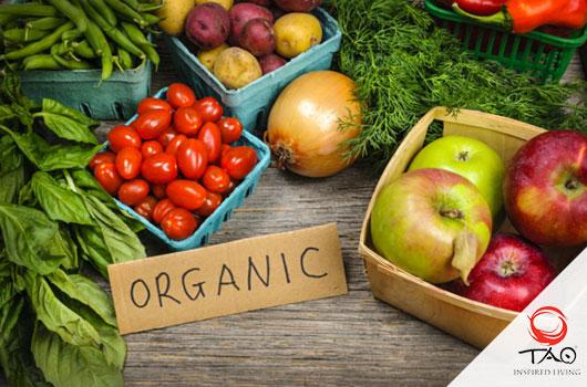 Organic Markets in the Riviera Maya