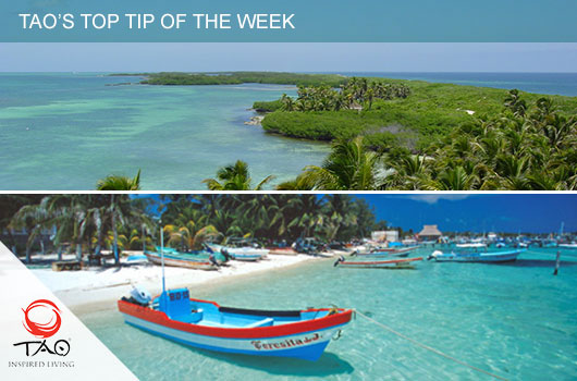 Explore two incredible islands in one day - Isla Contoy and Isla Mujeres