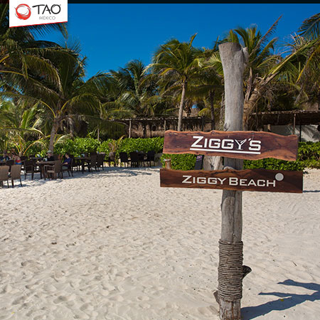 Lunch at Ziggys Beach Club, Tulum