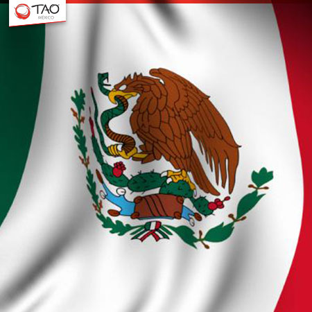 Flag Day in Mexico.