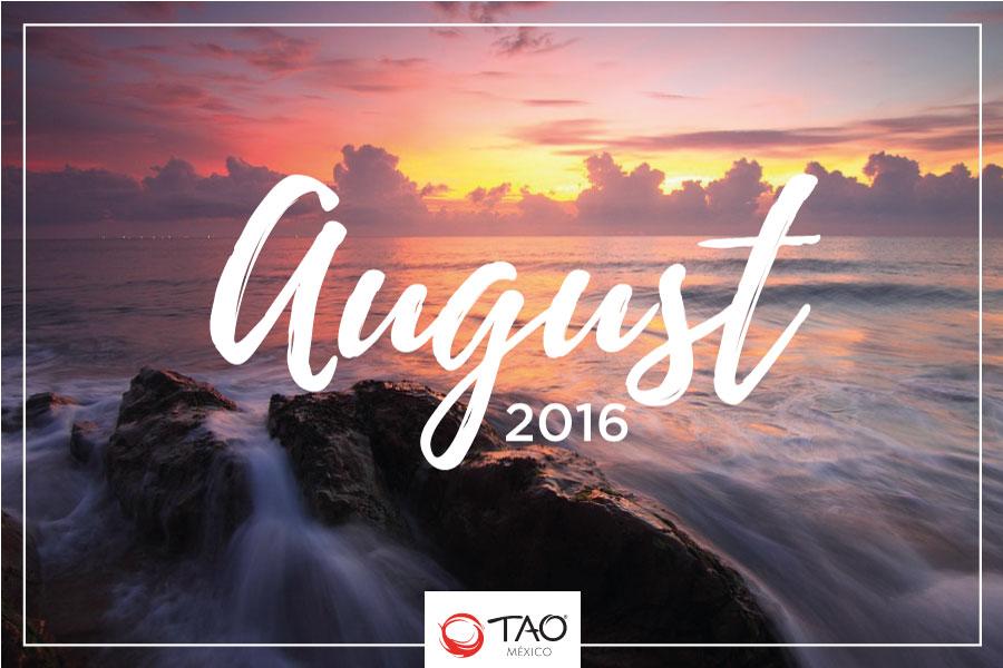 We Are TAO Newsletter / August 2016 / TAO México