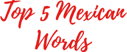 Mexican Words