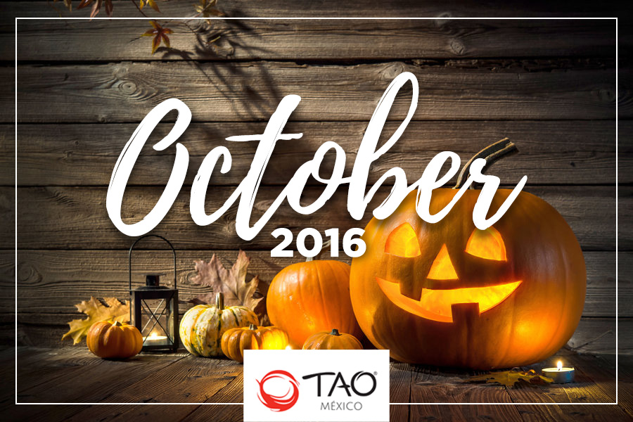 We Are TAO Newsletter / October 2016 / TAO México
