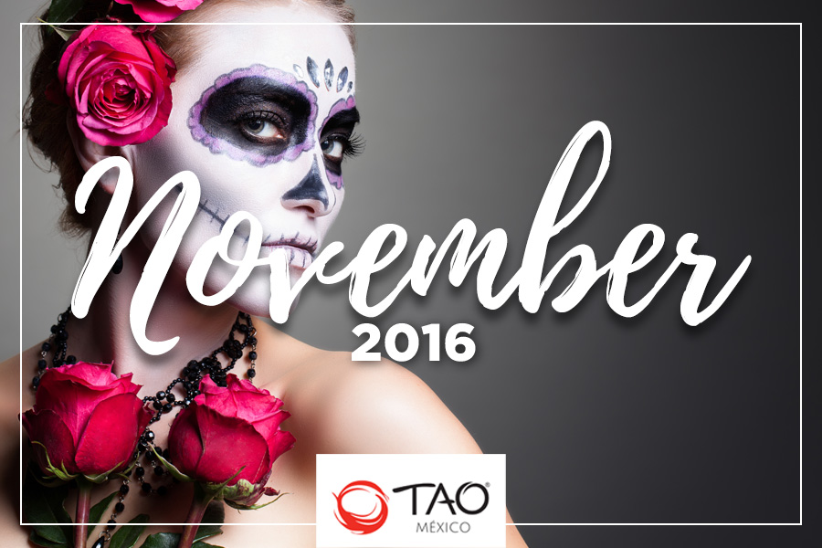 We Are TAO Newsletter / November 2016 / TAO México