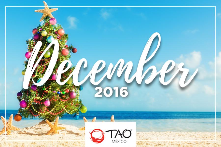 We Are TAO Newsletter / December 2016 / TAO México