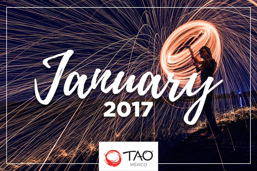 We Are TAO Newsletter / January 2017 / TAO México